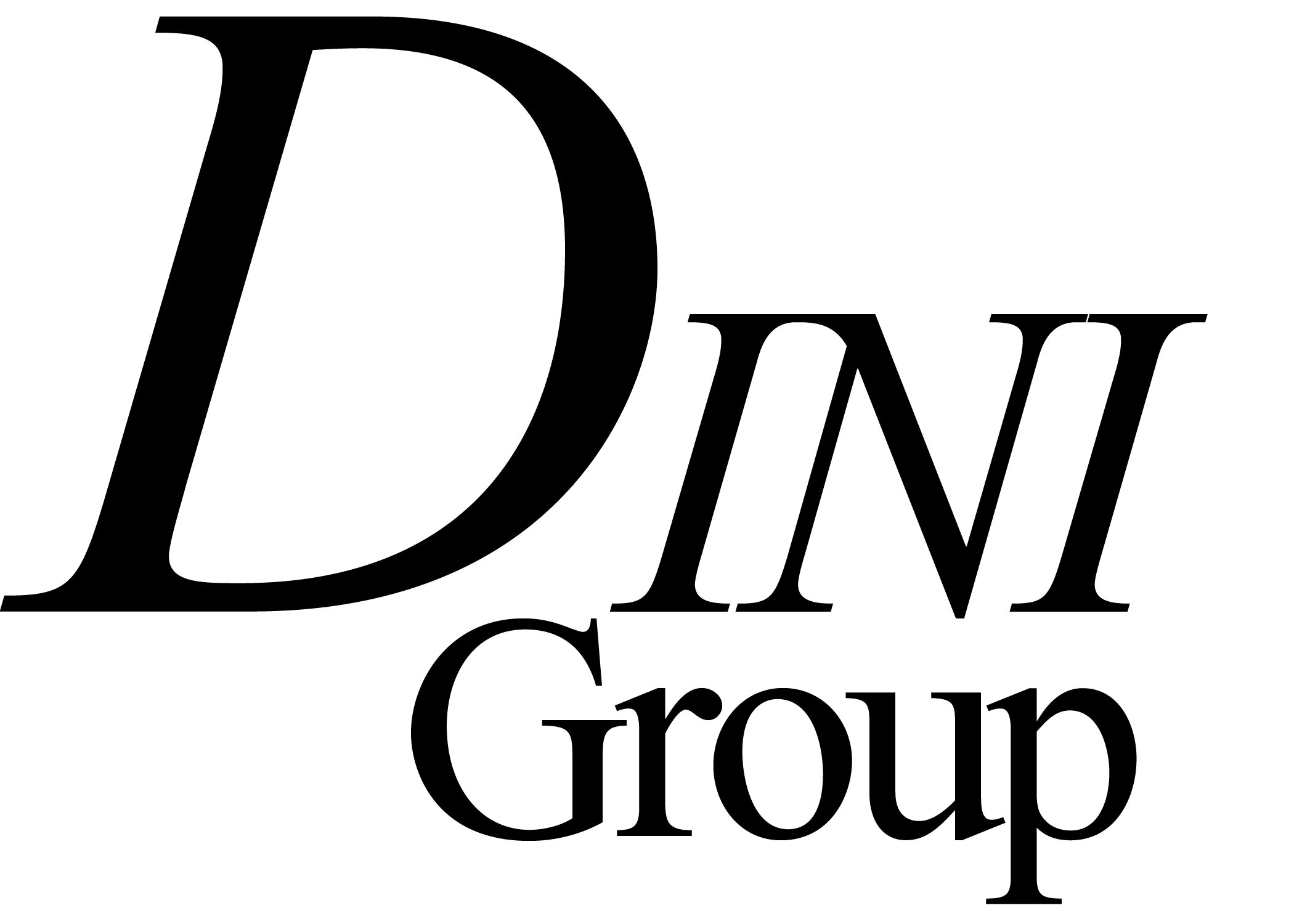 logo dinigroup